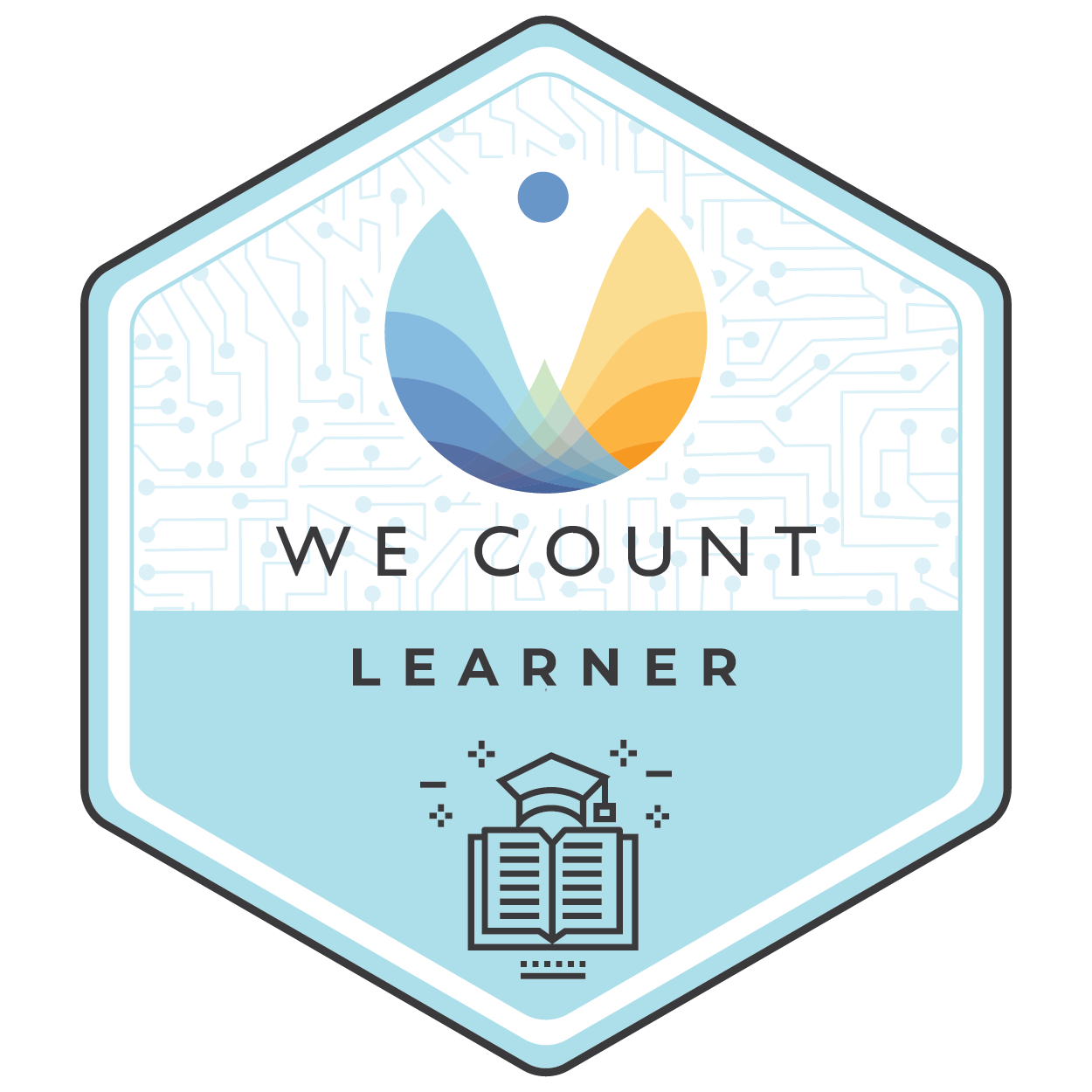 LEARNER: The Metric Society and the Unmeasurable